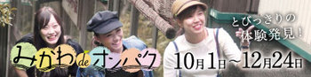 400-100.jpg